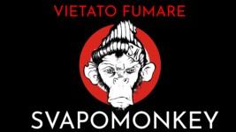 Vietato Fumare Shop Online